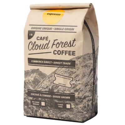 cloudforest3991